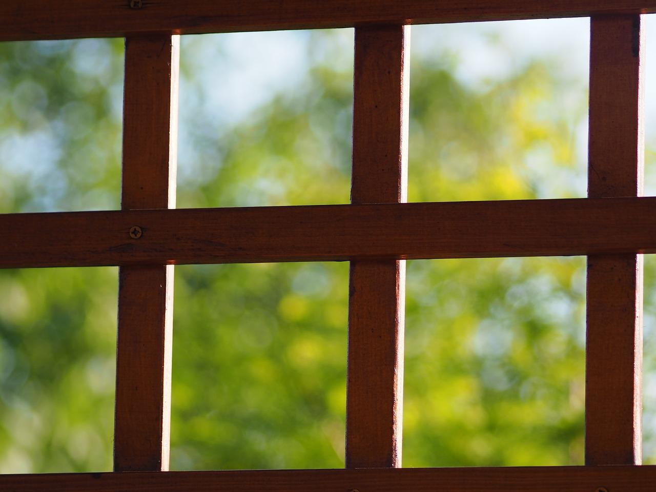Begrünter Sichtschutz für den Balkon